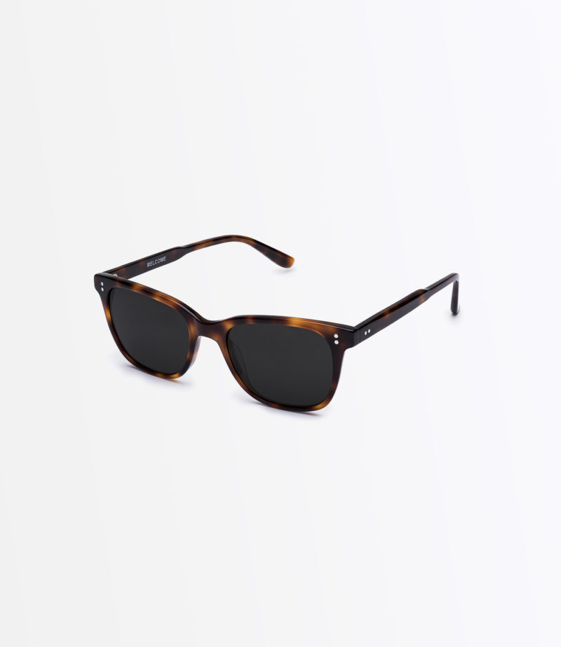 https://welcomeeyewear.com/wp-content/uploads/2019/01/rx13-medBrownTortoise-side-sun.jpg